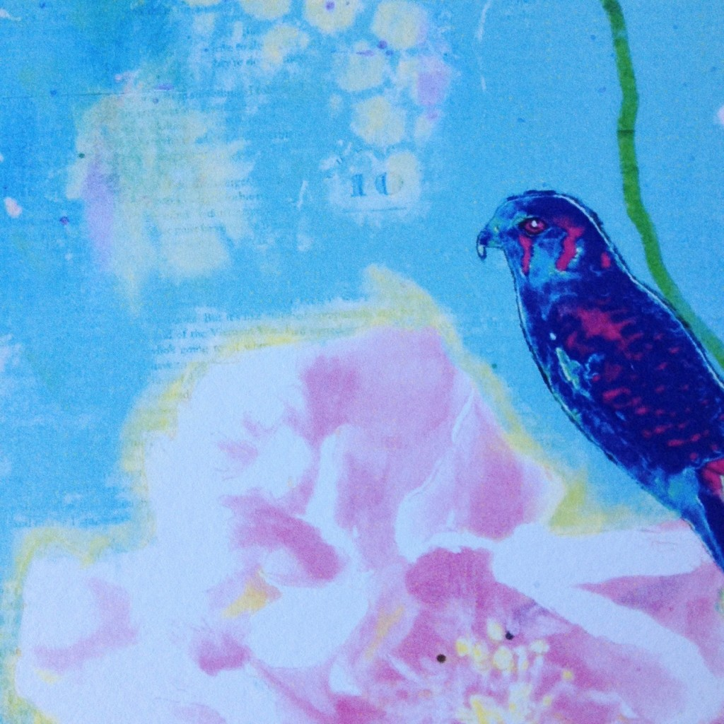 Kestrel Falcon and Peony art print in shades of pink, navy and teal