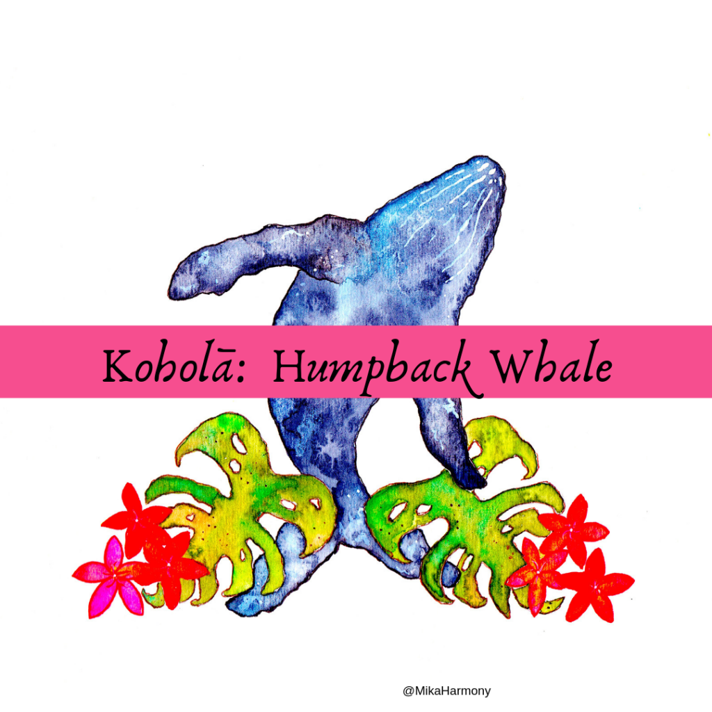 whale watching tips on Maui
